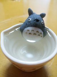 トトロの水浴び♪