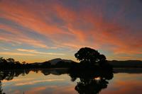 平 池 の 朝