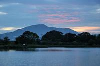朝 の 平 池