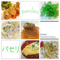 パセリの栄養価と効能