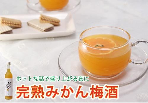 中野BC,完熟みかん梅酒,みかんの梅酒,全国梅酒品評会,全国梅酒まつり