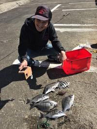 ★和歌山北港魚釣り公園紀州釣り 一番美味しい外道