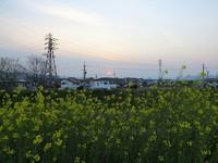 コウノトリ(J0057)情報