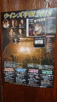 11/25(日)ウインズ平阪ライブ橋本