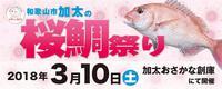 .-0310 第10回「加太桜鯛祭り」