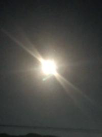 月の光に魅せられます♪
