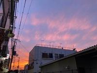 空の色 自然は調和