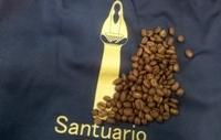 サントゥアリオ農園煎りました
