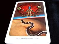 本能体~「感情体」~思考体~精神体 「魂への旅」3