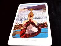 楽になるダルマの心理楽 6「無知の力の真実」