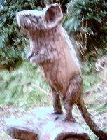 チェルノブイリの野生生物・写真