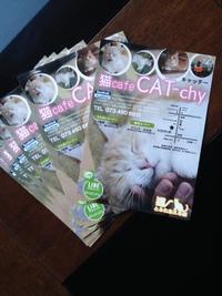 猫カフェキャッチー様ニューデザイン