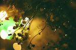 福島原発事故がドイツで演劇に
