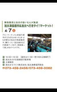 7日(土)加太へ