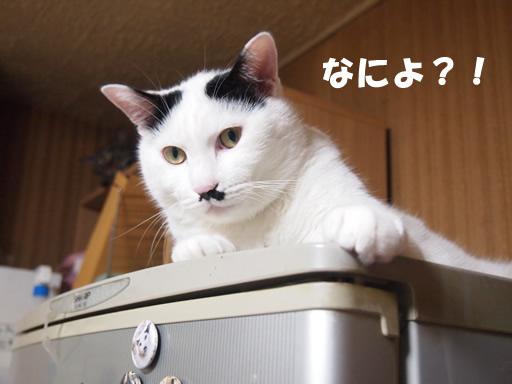 前向き!!!!