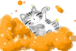 子猫の寝顔♪