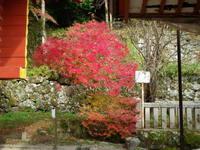 談山神社、長谷寺、正暦寺、ー3