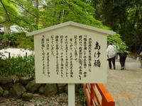京都、下鴨神社・神泉苑・清水寺巡り
