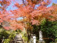 談山神社、長谷寺、正暦寺、ー5