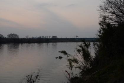 冬枯れの紀の川