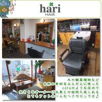 hari HAIR(ハリ・ヘア)