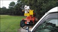ゴルフ場敷地内のキイロスズメバチ駆除、高所作業車