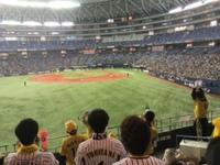 阪神オープン戦