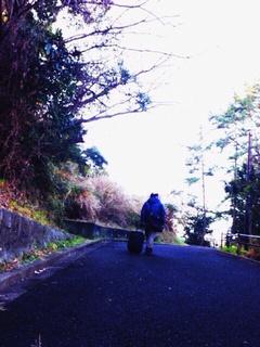 旅の記録〜展望台〜