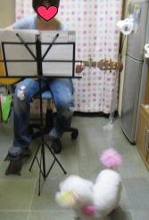 えるにギターを・・・