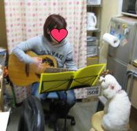 えるにギター