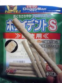 歯の手入れ(^皿^)y