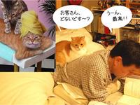 小ネタ集001「ネコのマッサージ屋さん」