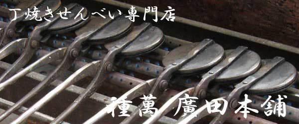ようこそ、丁焼き 和歌浦せんべい・肉桂(ニッキ)せんべいの「種萬 廣田本舗」のブログへ。「種萬 廣田本舗」では、昔ながらの製法にこだわり、和歌山で愛され続けた味を提供しております。