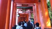 京都ミネラルショーに行ってきました