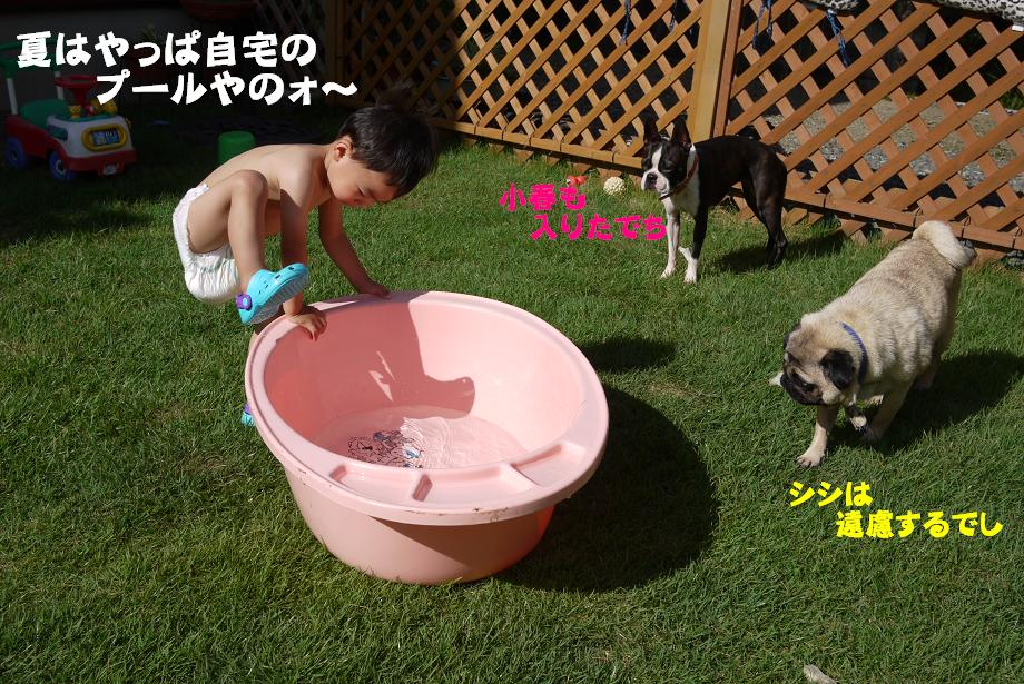サマ~ =2012夏=