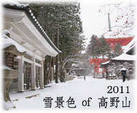 雪景色 of 高野山