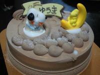 サーティーワン誕生日ケーキ