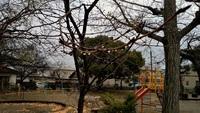 雨の日のクツ