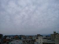やっと雨和歌山市