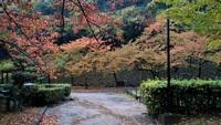 雨の和歌山城