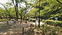 暑い、遠足、和歌山城