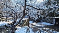 和歌山市の雪