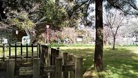 和歌山城公園のホトトギス