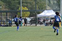 平成30年度スポーツ少年団競技大会(海南・海草ブロック)2日目。