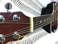 リビングギター