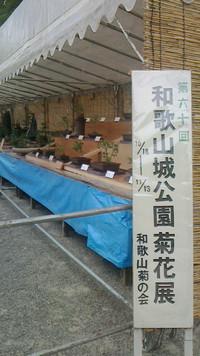 菊花展・和歌山城