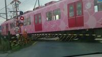 マツ・電車