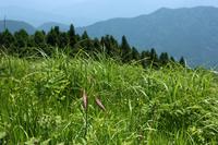 生石 高 原