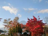 富士河口湖紅葉まつり明日から