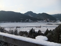 今朝は寒かった